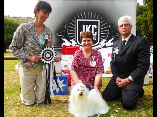 Fanie van der Linde Judging Toy Group Best In Show judge Maria Heneke