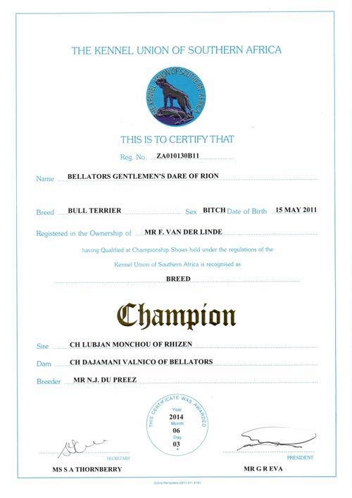 Ch Bellators Gentlems Dare of Rion Champion Certificate