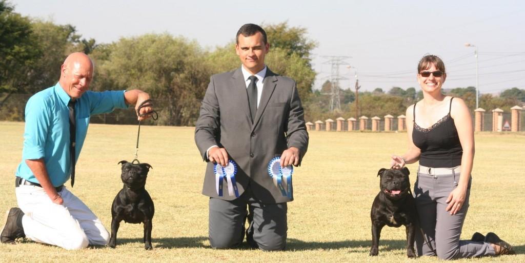Northern Tshwane Kennel Club FCI INT show Stafforshire Bullterrier Best of Breed and Best Opposite Sex Judge Rion van der Linde