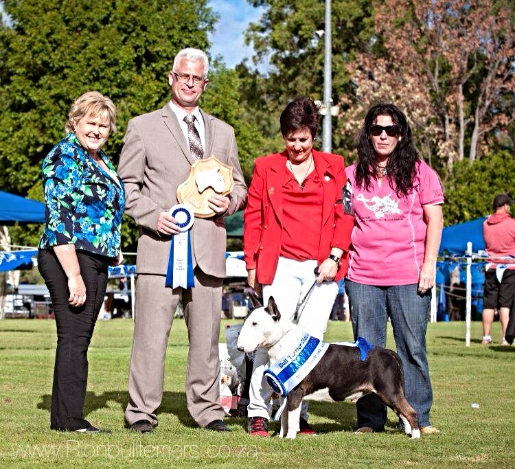 RCC dog - Runner Up Best In Show