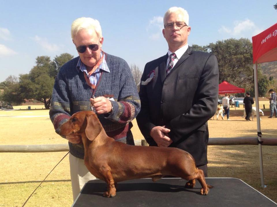 Fanie van der Linde Hound Group Judge South Africa