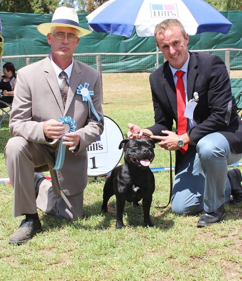 Fanie van der Linde - judge - Terrier Group